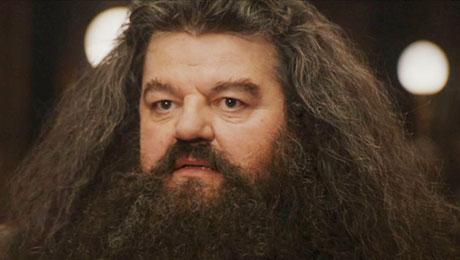 Hagrid/Divulgação