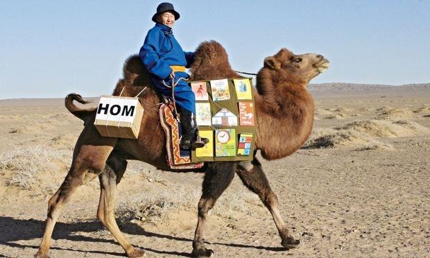 Biblioteca no camelo